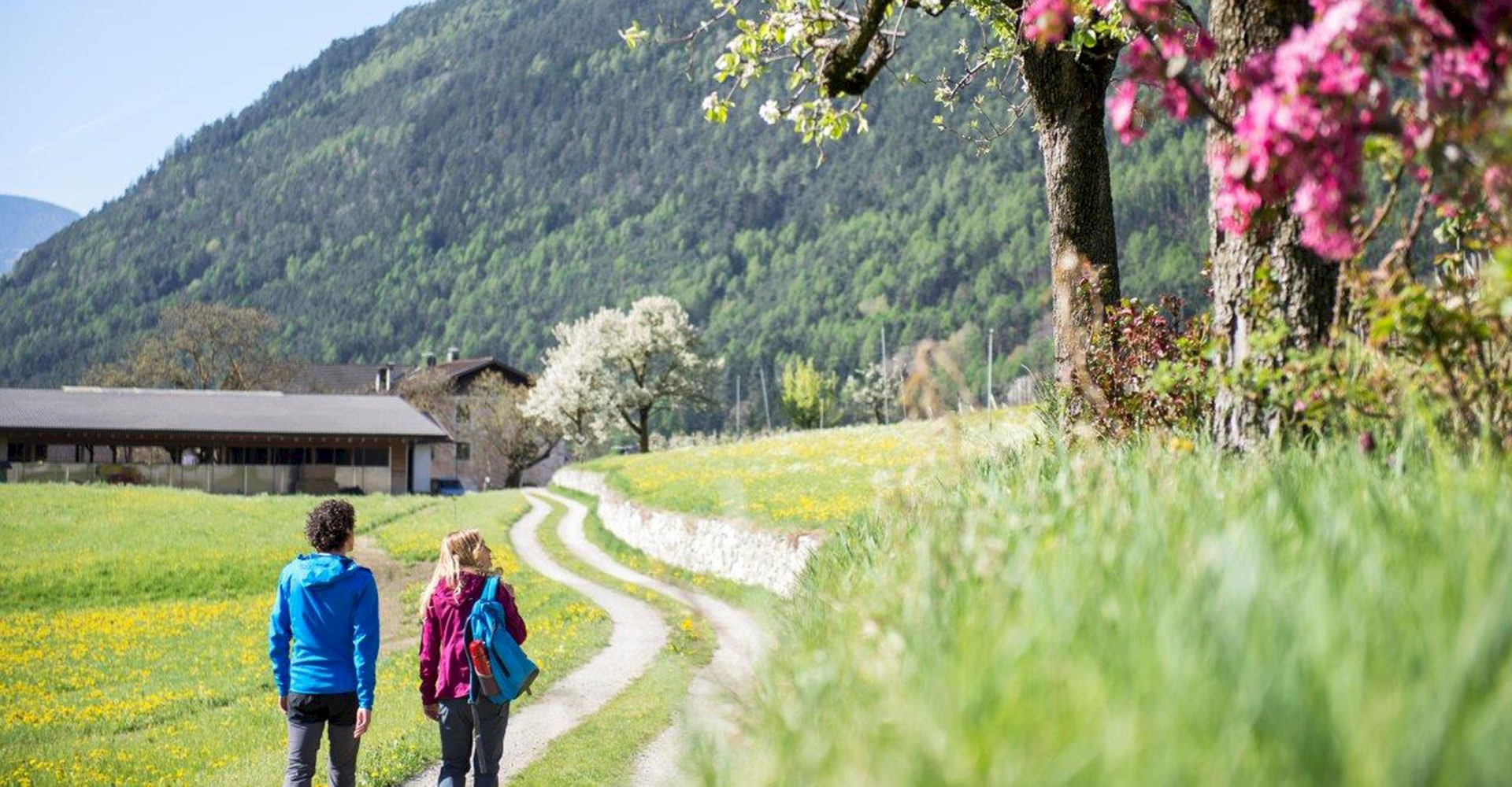 Spring offer South Tyrol